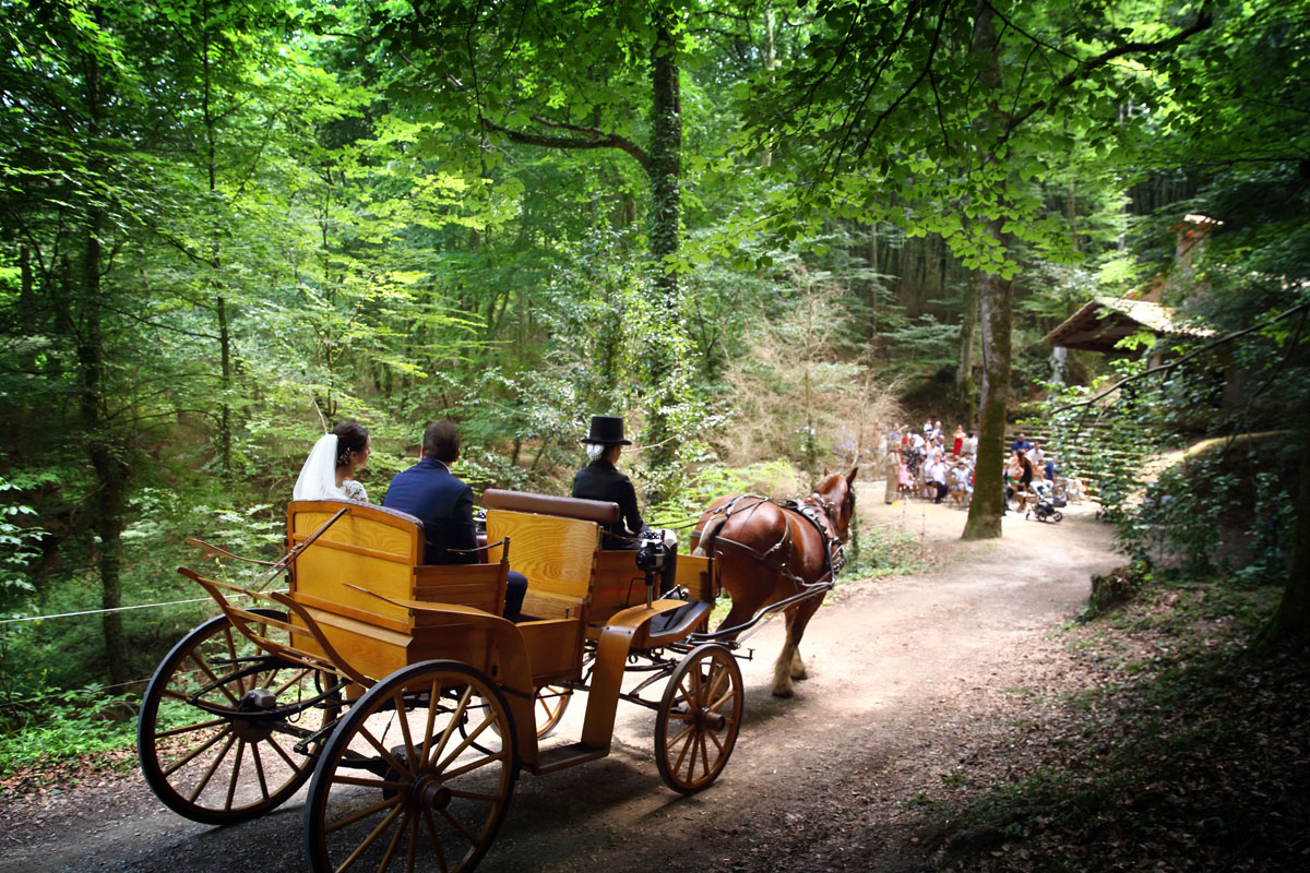 Romantic wedding in the forest 20